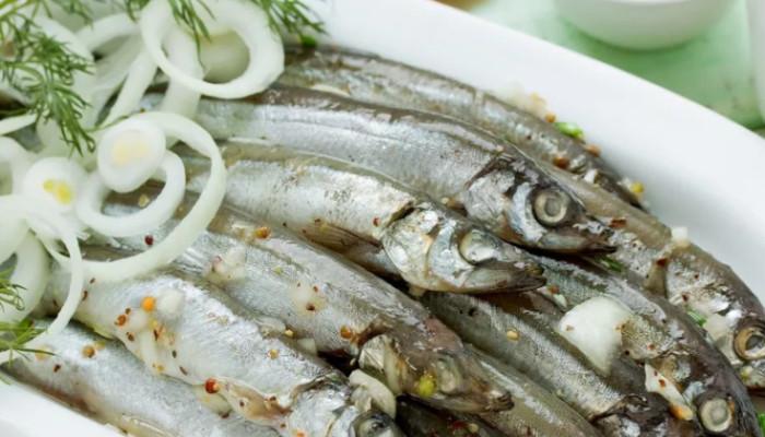 anchous_s_lukom
