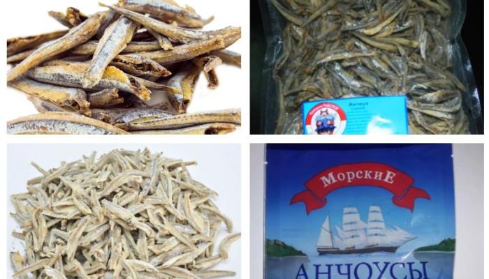 sushenyj_anchous
